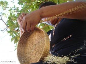 Associação Comunitária dos Quilombos de Barra de Aroeira